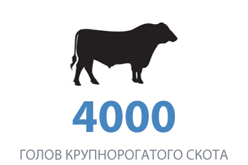 1 4000